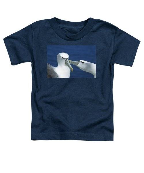 White-capped Albatrosses Courting Toddler T-Shirt by Tui De Roy