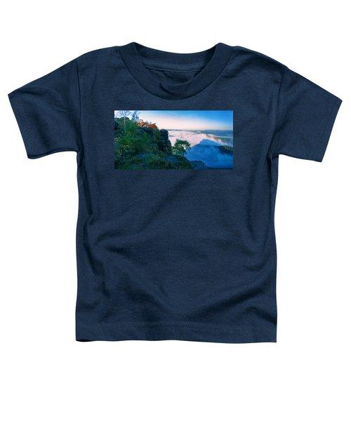 White Wafts Of Mist Around The Lilienstein Toddler T-Shirt