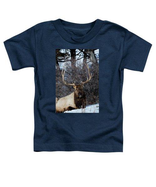 Wyoming Elk Toddler T-Shirt