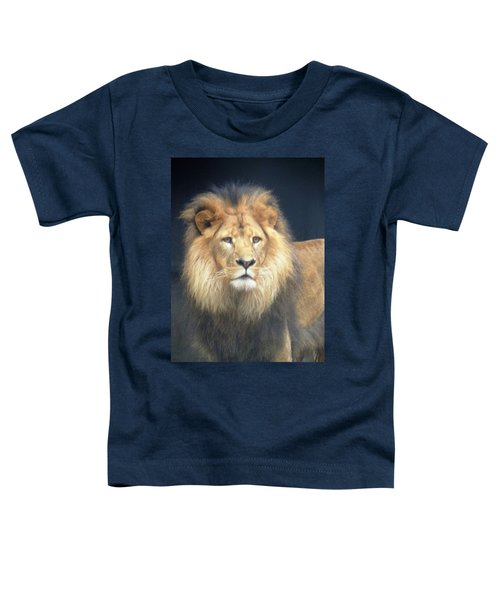 Almighty Toddler T-Shirt