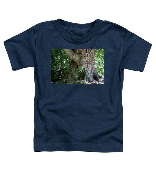 Big Fat Tree Trunk Toddler T-Shirt