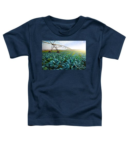 Cabbage Growth Toddler T-Shirt by Carlos Caetano