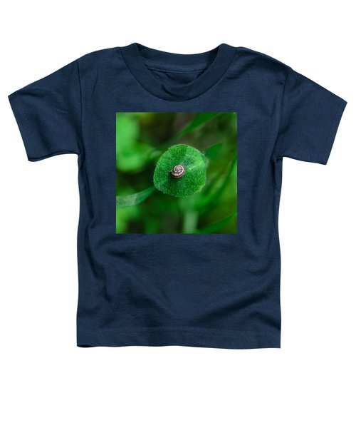 Islet Toddler T-Shirt