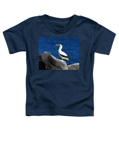Nazca Booby Toddler T-Shirt by Tony Beck