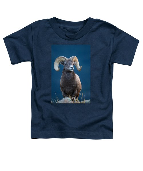 Rocky Mountain Big Horn Toddler T-Shirt