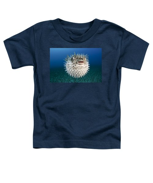 Spotted Porcupinefish IIi Toddler T-Shirt