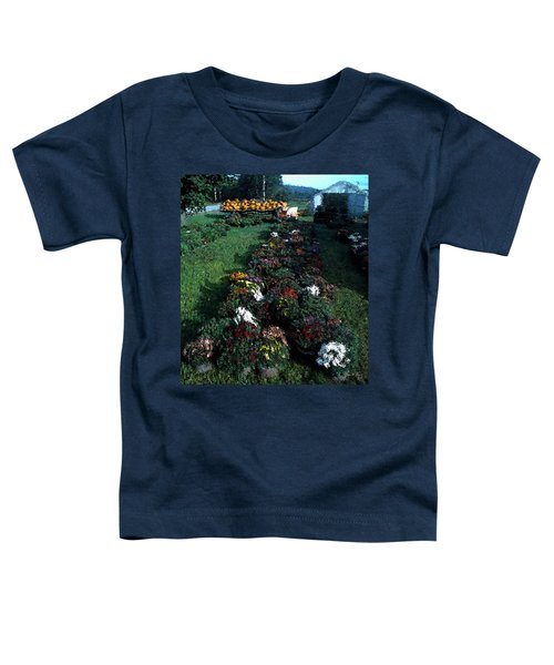 The Stand In Autumn Toddler T-Shirt