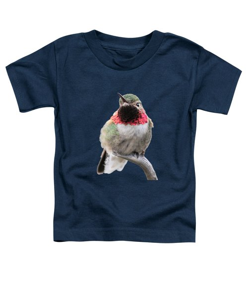Broad-tailed Hummingbird Toddler T-Shirt