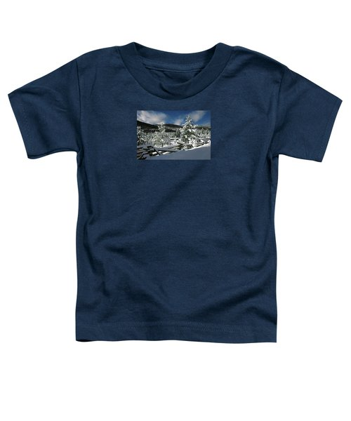 A Place In The Winter Sun Toddler T-Shirt