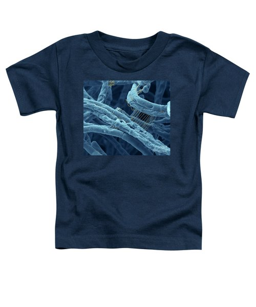 Anthrax Bacteria Sem Toddler T-Shirt