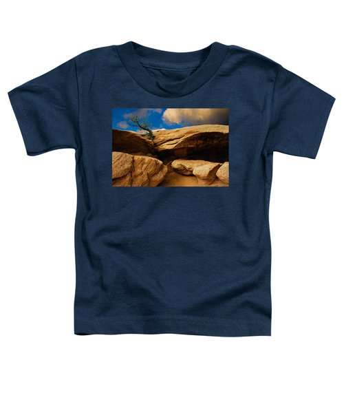 Between A Rock And A Hard Place Toddler T-Shirt