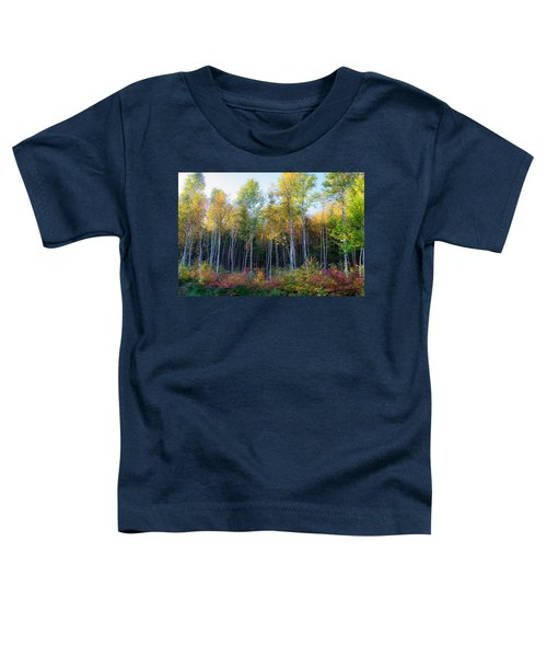 Birch Trees Turn To Gold Toddler T-Shirt