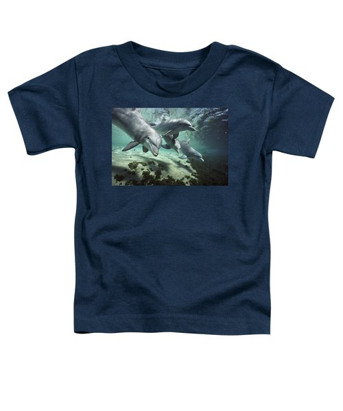 Four Bottlenose Dolphins Hawaii Toddler T-Shirt