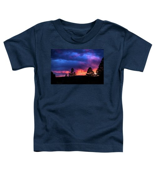 Colors Of The Spirit Toddler T-Shirt