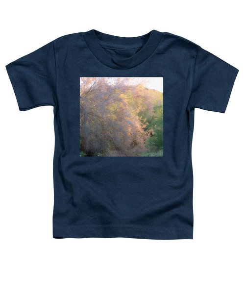 Desert Ironwood Blooming In The Golden Hour Toddler T-Shirt