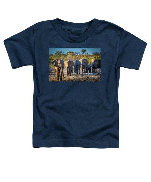 Eight Elephants Toddler T-Shirt