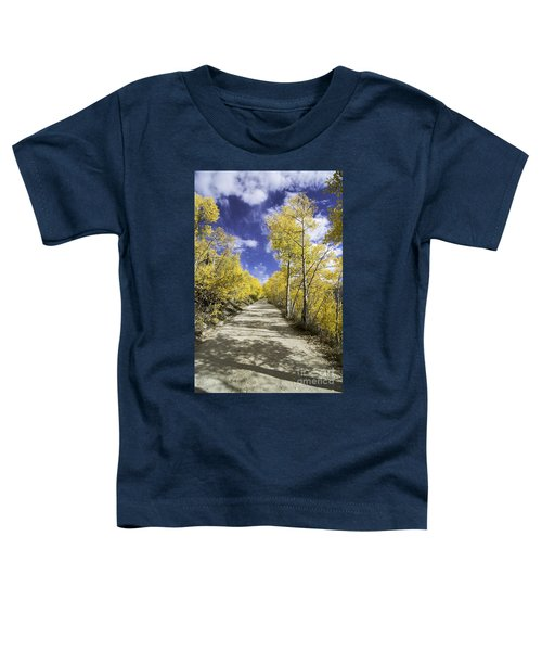Fall On Boreas Pass Toddler T-Shirt