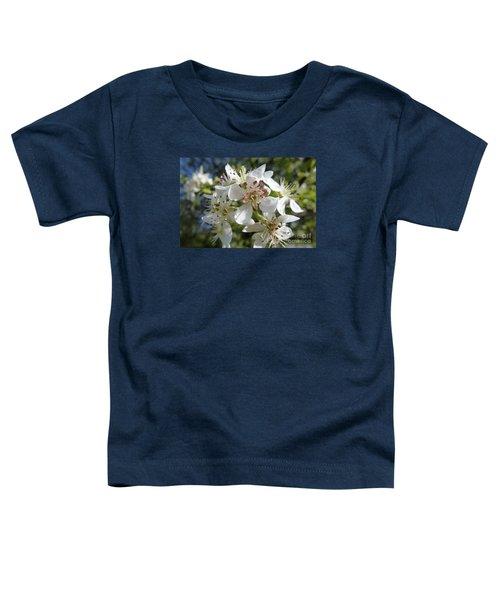 Flowering Of White Flowers 2 Toddler T-Shirt
