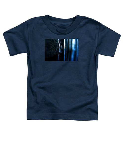 Ice Formation 09 Toddler T-Shirt