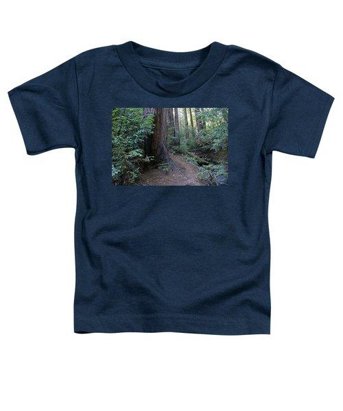 Magical Path Through The Redwoods On Mount Tamalpais Toddler T-Shirt