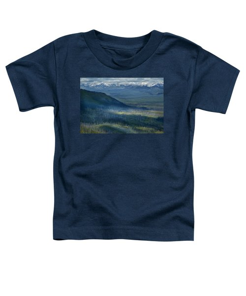 Montana Mountain Vista #3 Toddler T-Shirt