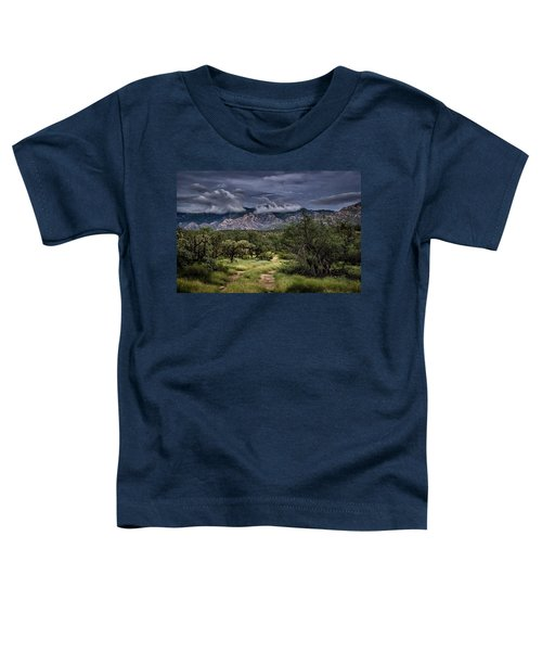 Odyssey Into Clouds Toddler T-Shirt