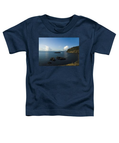 Rosario Strait Near Anacortes Toddler T-Shirt