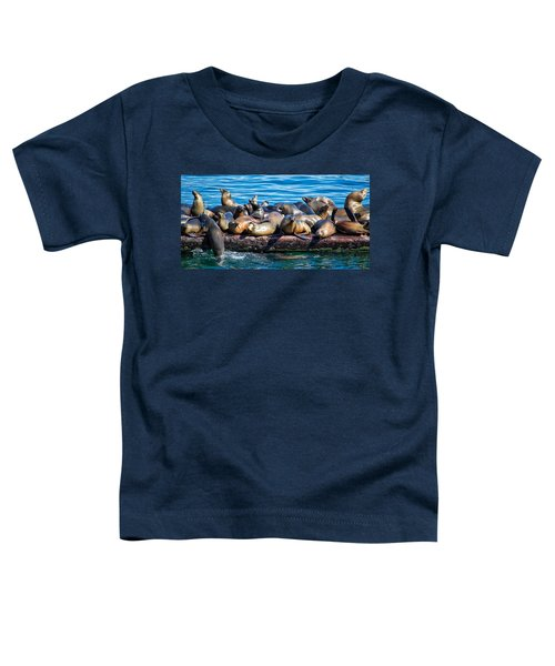 Sealions On A Floating Dock Another View Toddler T-Shirt