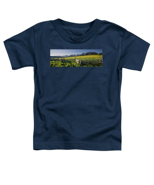 Toddler T-Shirt featuring the photograph Sneffels Fence Pano by Whit Richardson