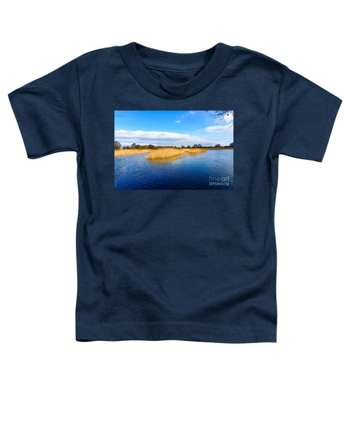 Somerset Levels Toddler T-Shirt