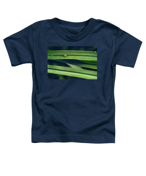 Stacked Toddler T-Shirt