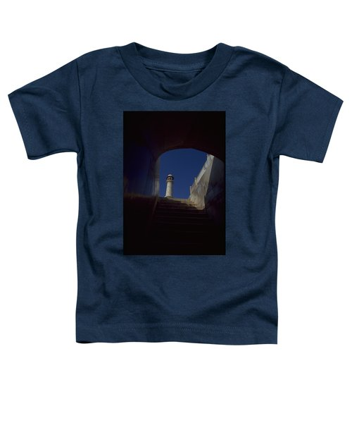 Taj Mahal Detail Toddler T-Shirt