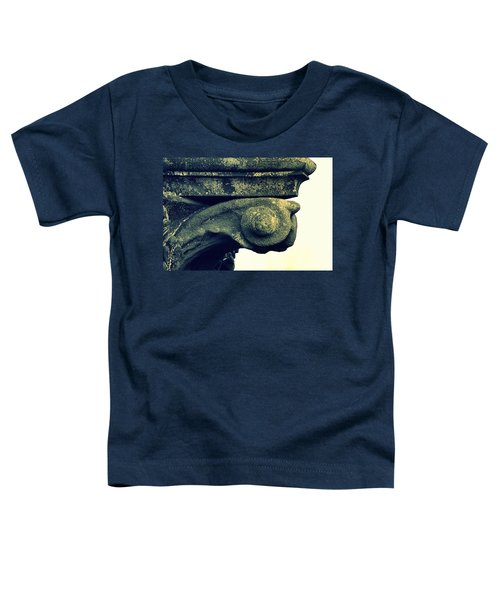 Timeworn Capital Toddler T-Shirt