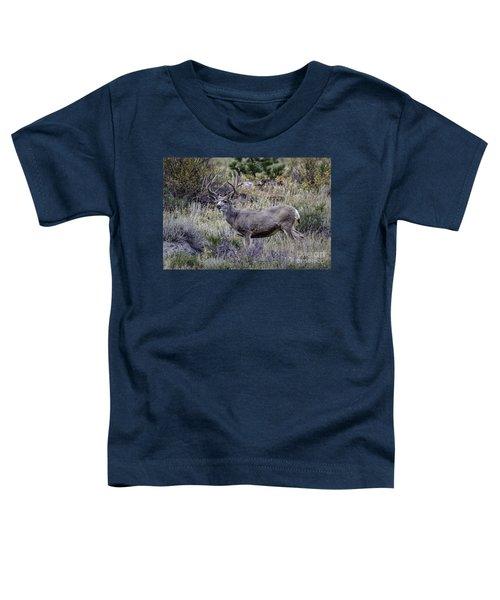 Velvet Mule  Toddler T-Shirt