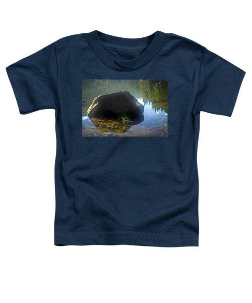 Warming Sun Toddler T-Shirt