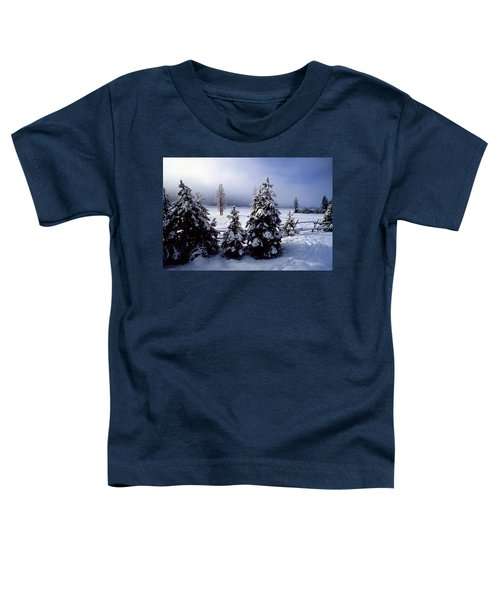 Winter Takes All Toddler T-Shirt