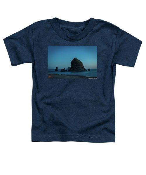 Haystack And Needles Toddler T-Shirt