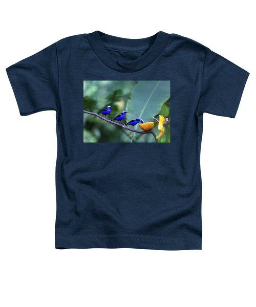 Honeycreeper Buffet Line Toddler T-Shirt