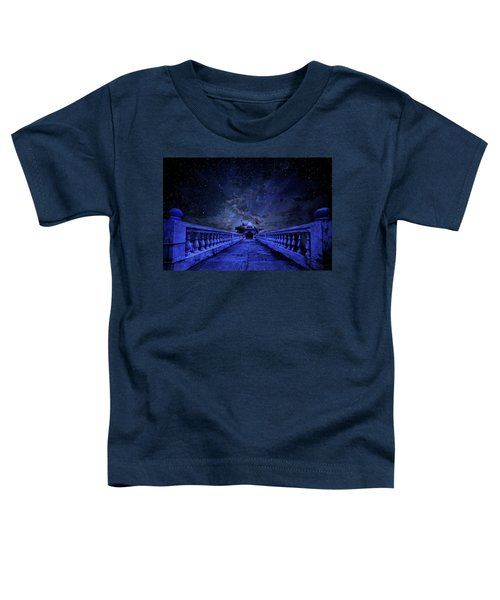 Night Sky Over The Temple Toddler T-Shirt