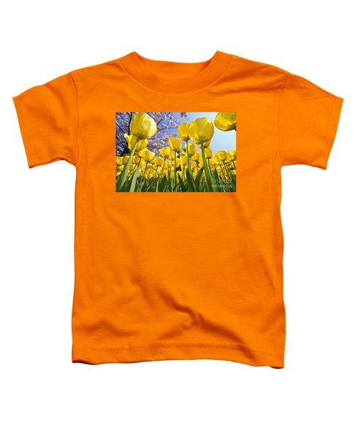 090416p030 Toddler T-Shirt