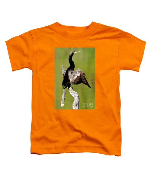 Anhinga Anhinga Anhinga Drying Plumage Toddler T-Shirt by Millard H. Sharp