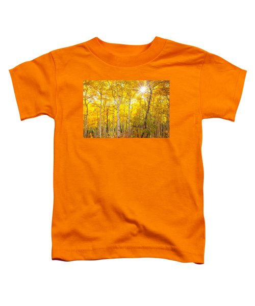 Aspen Morning Toddler T-Shirt