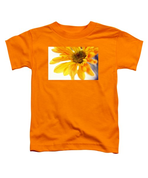 A Little Bit Sun In The Cold Time Toddler T-Shirt