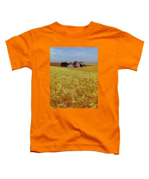 Amber Waves Of Grain - V Toddler T-Shirt