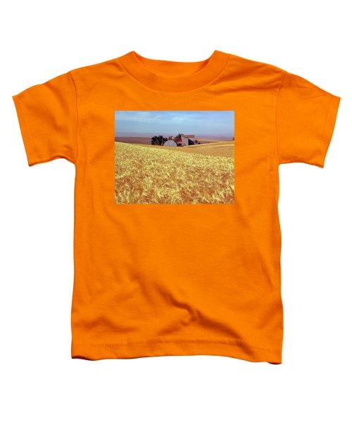 Amber Waves Of Grain Toddler T-Shirt