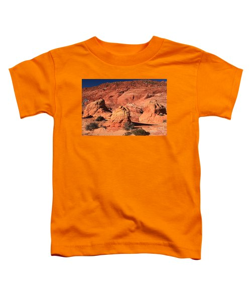 Ancient Sand Dunes Toddler T-Shirt
