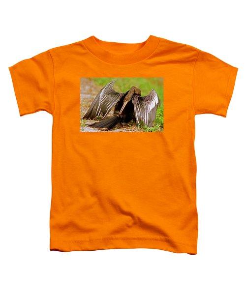 Anhinga Anhinga Anhinga Preening Toddler T-Shirt