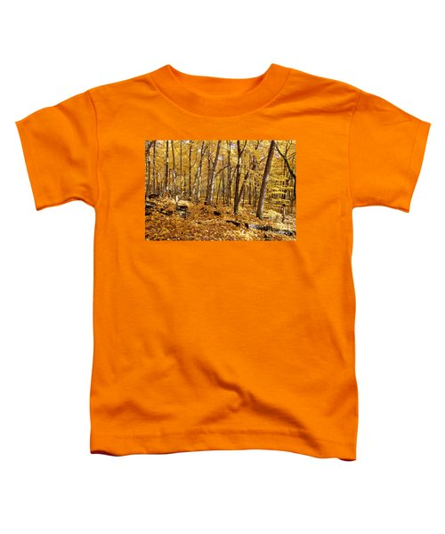 Arboretum Trail Toddler T-Shirt