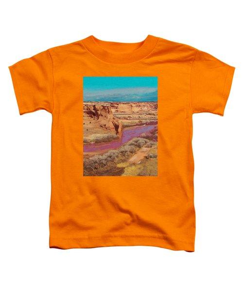 Arizona 2 Toddler T-Shirt