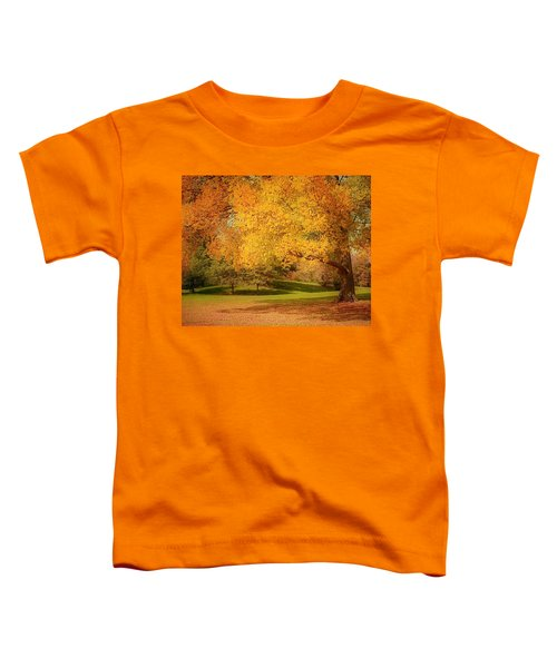 As The Leaves Fall Toddler T-Shirt